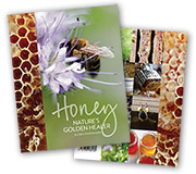 your health - how bees can help booklet